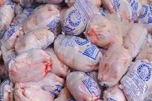 16 تن مرغ منجمد در اشنویه توزیع شد