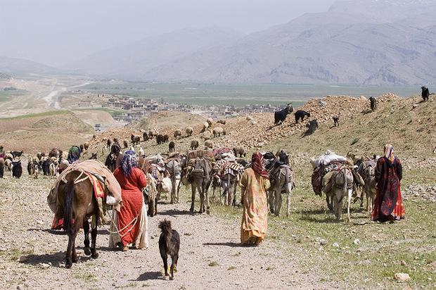 بیش از 460 میلیارد ریال تسهیلات به عشایر فارس تخصیص یافت