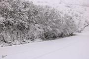 سرما و برف در راه آذربایجان شرقی  تبریز سرد می شود