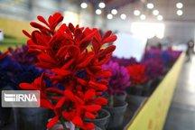 هفدهمین نمایشگاه گل و گیاه در همدان گشایش یافت