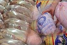 20 تن مرغ منجمد در بوکان توزیع شد