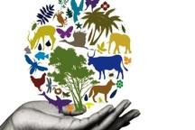 تضمین حیات انسانی با حفاظت از تنوع زیستی