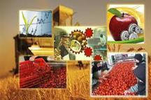 11پروژه کشاورزی در بافت آماده بهره برداری است