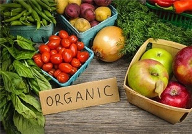 چهار استان کشور برای تولید محصولات ارگانیک انتخاب شدند