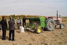 38 میلیارد ریال تسهیلات مکانیزاسیون کشاورزی در قزوین جذب شد