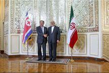 وزیر امور خارجه کره شمالی با ظریف دیدار کرد