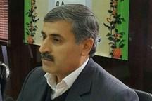 هدایت تحصیلی دانشآموزان استان بوشهر براساس امکانات مدارس عملیاتی میشود