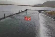 سرریز شدن دریاچه زریوار مریوان در استان کردستان
