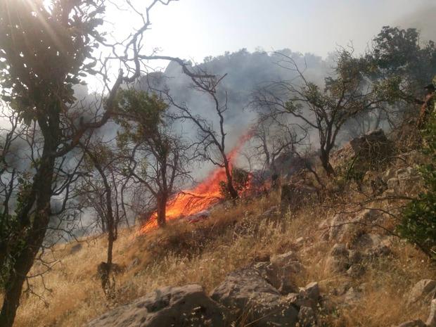 """مهار آتش سوزی مراتع و جنگلهای """"طسوج"""" چرام پس از یک شبانه روز تلاش+تصاویر"""