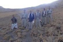 گشت زنی مدیر کل  و محیط بانان حفاظت محیط زیست لرستان در ارتفاعات گرین