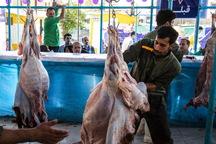 305 تن گوشت قرمز در ماکو ذبح شد