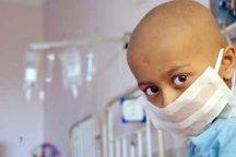 ثبت سالانه چهار هزار و 500 مورد ابتلا به سرطان در مازندران