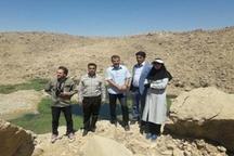 بازدید و بررسی وضعیت تالابهای پلدختر با حضور کارشناسان کشوری