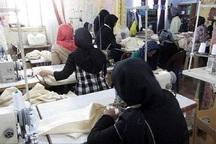 55 درصد خانواده های مددجوی قزوین، زنان سرپرست خانوار هستند