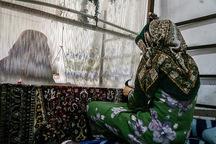 بوکان رتبه دوم پرداخت تسهیلات اشتغال درآذربایجان غربی را دارد