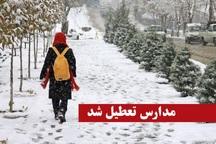 سرما و بارش سنگین برف مدارس هزار جریب نکا را تعطیل کرد