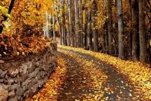 فرماندار: 600 هکتار باغ شهر سمنان باید محافظت شود