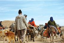2 درصد جمعیت استان عشایر هستند