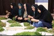 عضویت ۱۰۰ هزار روستایی خراسان شمالی در تعاونی