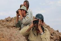امسال 44 شکارچی غیرمجاز در مهاباد دستگیر شدند