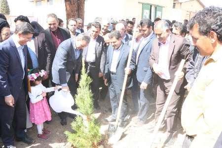 18 شرکت تعاونی برای حمایت از منابع طبیعی استان کرمان تشکیل شد