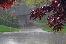 10 میلیمتر باران در گاریزات تفت ثبت شد