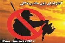 ممنوعیت صدور پروانه شکار پرنده به دلیل آنفلوانزای فوق حاد پرندگان در زنجان
