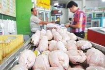 مشکل کمبود مرغ در ارومیه مرتفع می شود