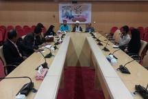 همایش ملی بی بی حسنیه در تربت حیدریه برگزار می شود