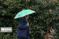 پایداری سرما و باران در مازندران تا پایان هفته