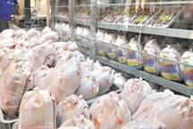گرانی گوشت قرمز عامل افزایش قیمت مرغ است