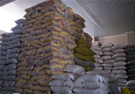 150 تن برنج قاچاق در شهرستان عسلویه کشف شد