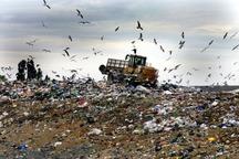 دفع نامناسب زباله دامگاه وحوش ملکشاهی شده است