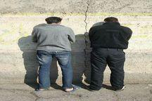 دستگیری عاملان سرقتهای یک میلیارد ریالی در نیشابور