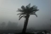 مه صبحگاهی میدان دید در آبادان را به 800 متر کاهش داد