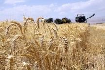 در تمدید و جذب بیمه کشاورزان خوزستان از تعهدات عقب هستیم