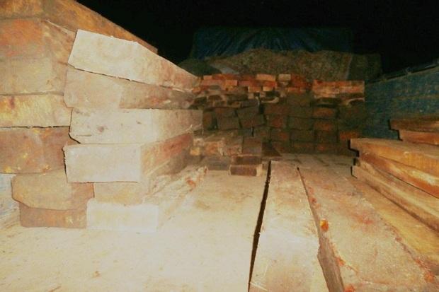 پنج تن چوب جنگلی قاچاق در تالش توقیف شد
