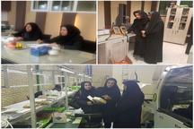 مشاور معاون وزیر صنعت: برنامه ریزی برای حضور فعال زنان در بخش اقتصاد ضروری است