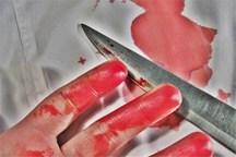 تلاش برای دستگیری قاتل فراری از کانون اصلاح وتربیت بجنورد ادامه دارد