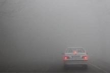 مه غلیظ، تردد در برخی محورهای اصفهان را کُند کرده است