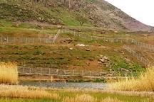 گرانی زمین، تمایل به کوه خواری را افزایش داده است