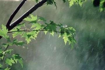 بارندگی در ارومیه به 38 میلیمتر در 12 ساعت گذشته رسید
