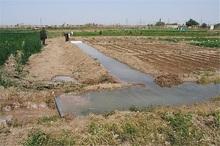 شیروان در رفع تداخلات اراضی ملی خراسان شمالی پیشرو است