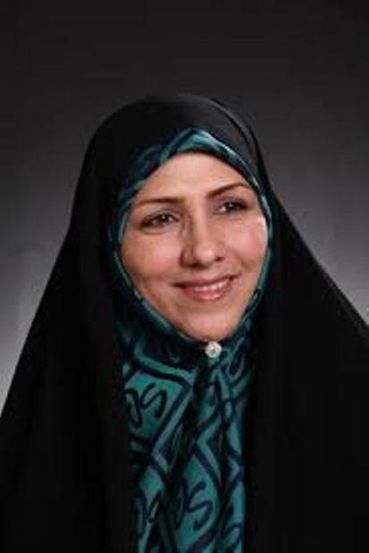 نماینده مجلس: حماسه 29 اردیبهشت فصل الخطاب تمام اختلاف نظرها بود