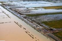 ۳۱ میلیارد تومان هزینه تخلیه اراضی کشاورزی سیل زده در خوزستان