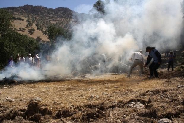 78 کانون مستعد آتش سوزی در طبیعت ایلام شناسایی شد