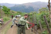 رفع تصرف افزون بر هشت هزارمتر مربع اراضی حفاظت شده تالش