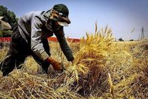 350 میلیاردریال تسهیلات اشتغال فراگیرروستایی در داراب جذب شد