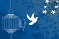 45 زندانی محکوم به پرداخت مهریه در قزوین آزاد شدند