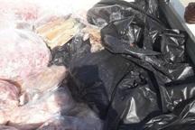 دامپزشکی 700 کیلوگرم گوشت آلوده را معدوم کرد